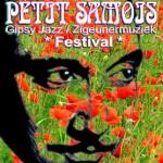 petit-samois-2011-Web-optim
