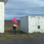 IJsland blueberry landscape
