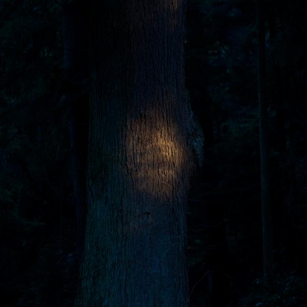 Work by Hikaru Hayashi